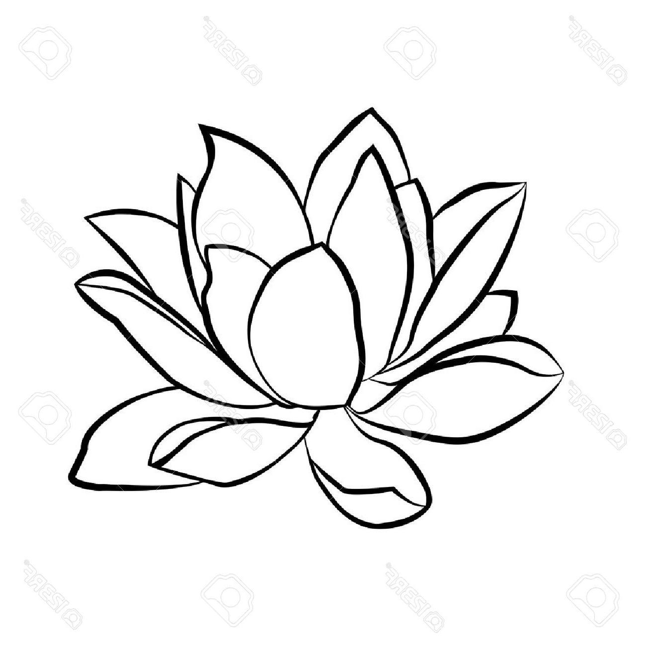 Lotus flower line drawing at getdrawings free for personal use 1300x1300 top lotus flowers icon the black line drawn on white background izmirmasajfo Images