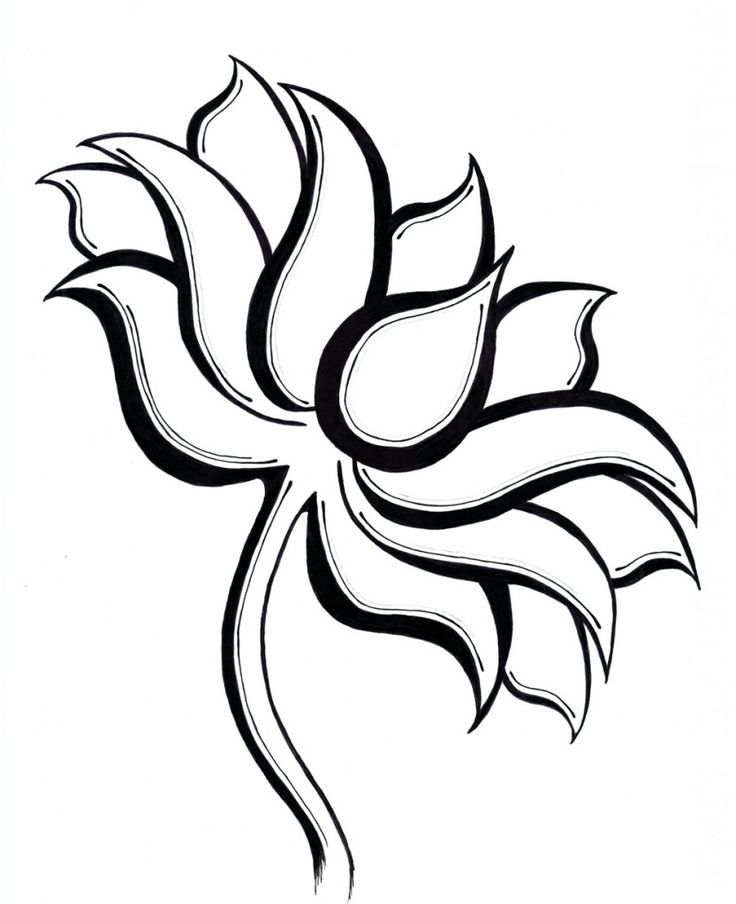 Lotus flower line drawing at getdrawings free for personal use 736x904 flower line drawings flower type of line drawing vector diagram ccuart Choice Image