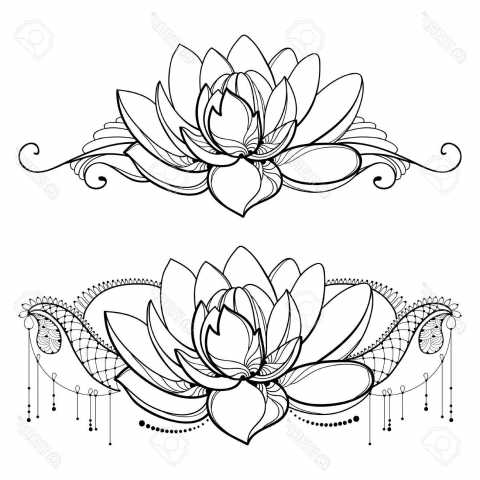 480x480 Family Drawing With Outline Lotus Flower, Decorative Lace