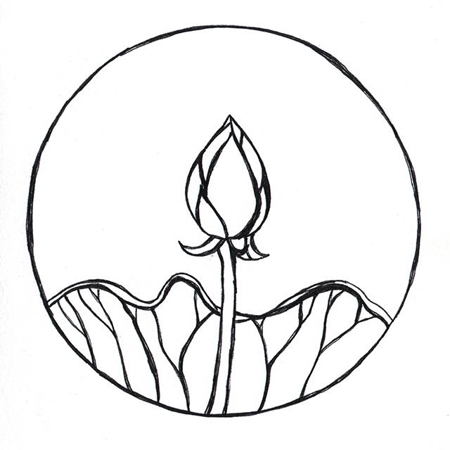640x640 Drawn Lotus Lotus Bud