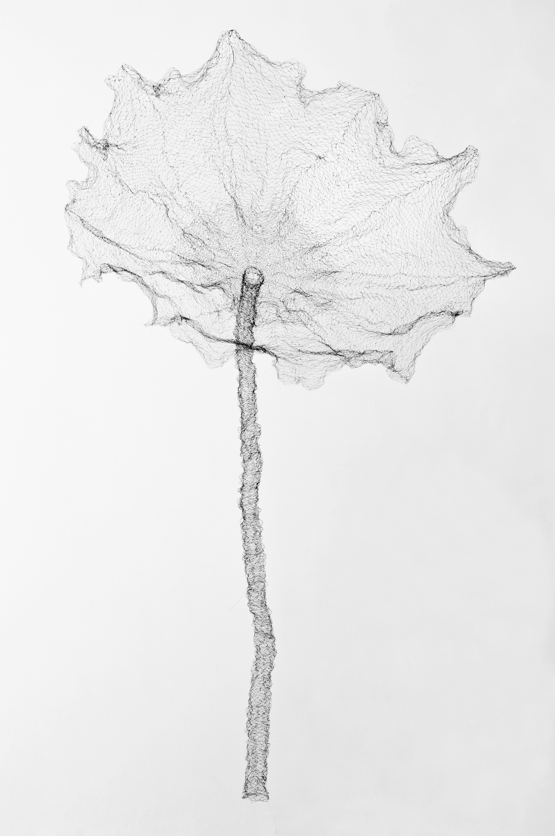 797x1200 Jayoung Yoon The Lotus Leaf 1