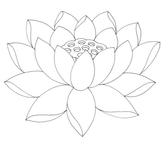 572x500 Coloring Pages Flower Coloring Pages Printable. Flower Coloring