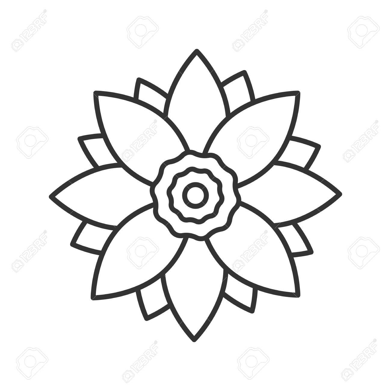 Lotus Line Drawing At Getdrawings Free For Personal Use Lotus