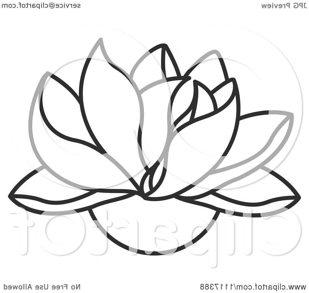 1080x1024 Top Clipart Of Black And White Lotus Flower Royalty Free Vector