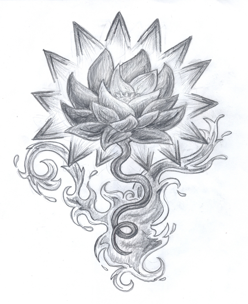 800x980 Collection Of Best Lotus Tattoo Drawing