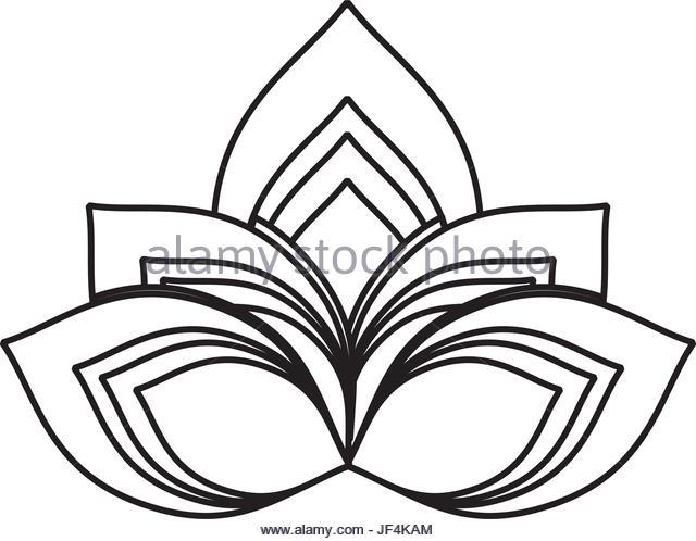 640x498 White Lotus Flower Stock Vector Images