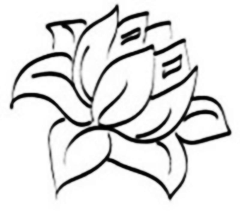 800x710 Lotus Flower Drawing Sketchdrawings Sketch Of Lotus Drawing