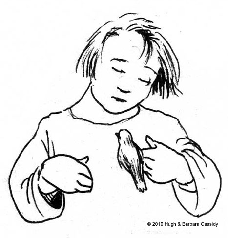 467x488 Eva Cassidy Artwork Sketches Of Animals