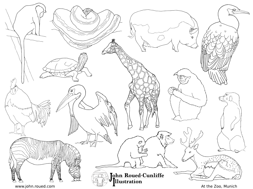 1000x750 Printable Animals From Munich Zoo Free Giraffe Colouring Page