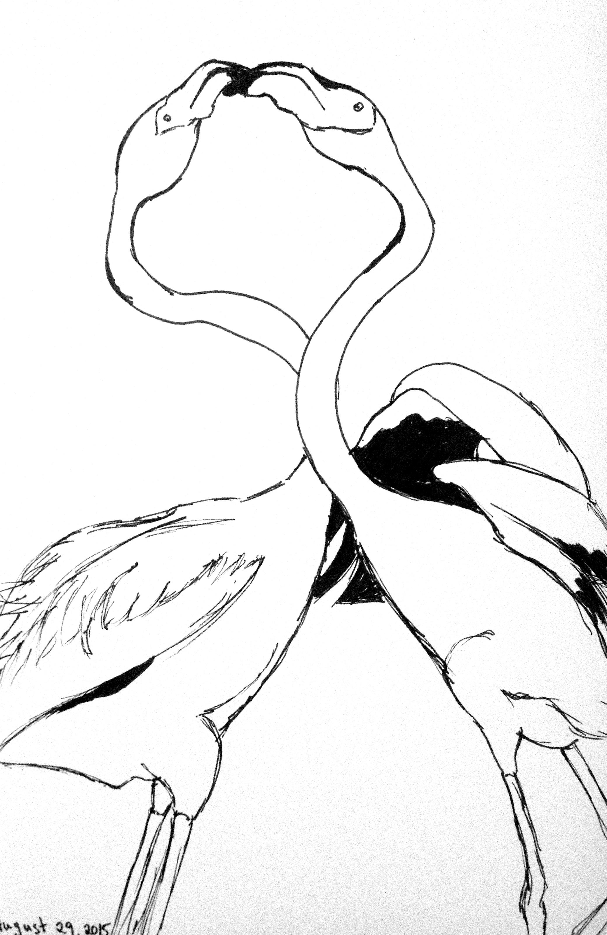 2080x3203 Day 241 Flamingo Love One Stumble