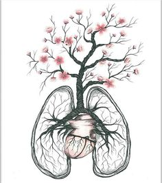 236x267 Floral Anatomy Heart Watercolor Painting Anatomical Human