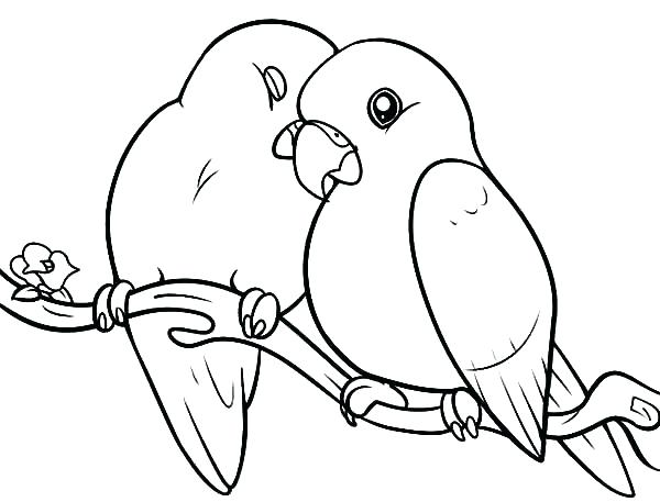 600x457 Free Coloring Pages Of Birds Coloring Pages Of Birds Realistic