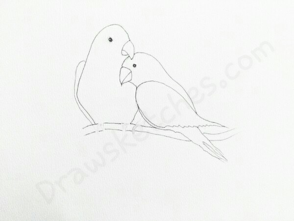 600x450 How To Draw Love Birds In A Few Easy Steps With Pictures