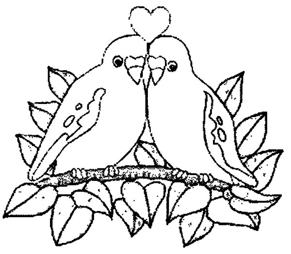 600x525 Love Birds Perching Coloring Pages Batch Coloring
