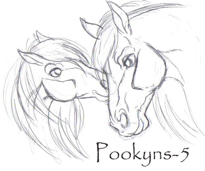 714x597 Two Lovebirds Original Sketch By Pookyhorse