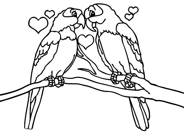 600x448 Love Bird Coloring Pages