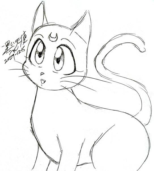 543x600 Luna Cat Sketch By Kuroitenshi13