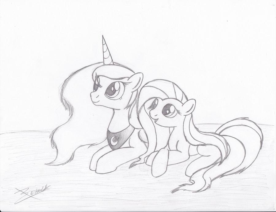 900x693 Princess Luna And Fluttershy By Xeirla