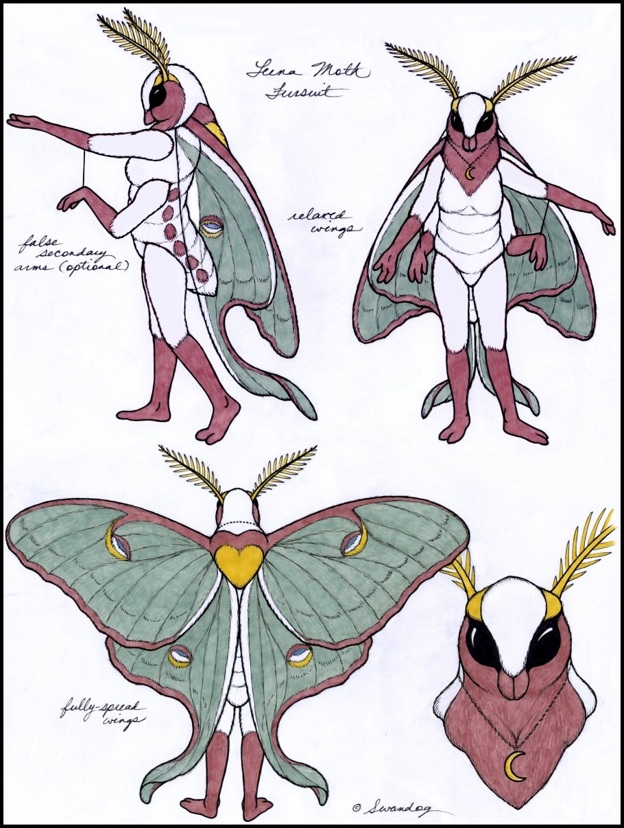 910x1207 Luna Moth Fursuit Free To Use By Swandog