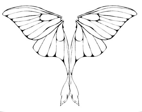 474x374 Luna Moth Wings By On @