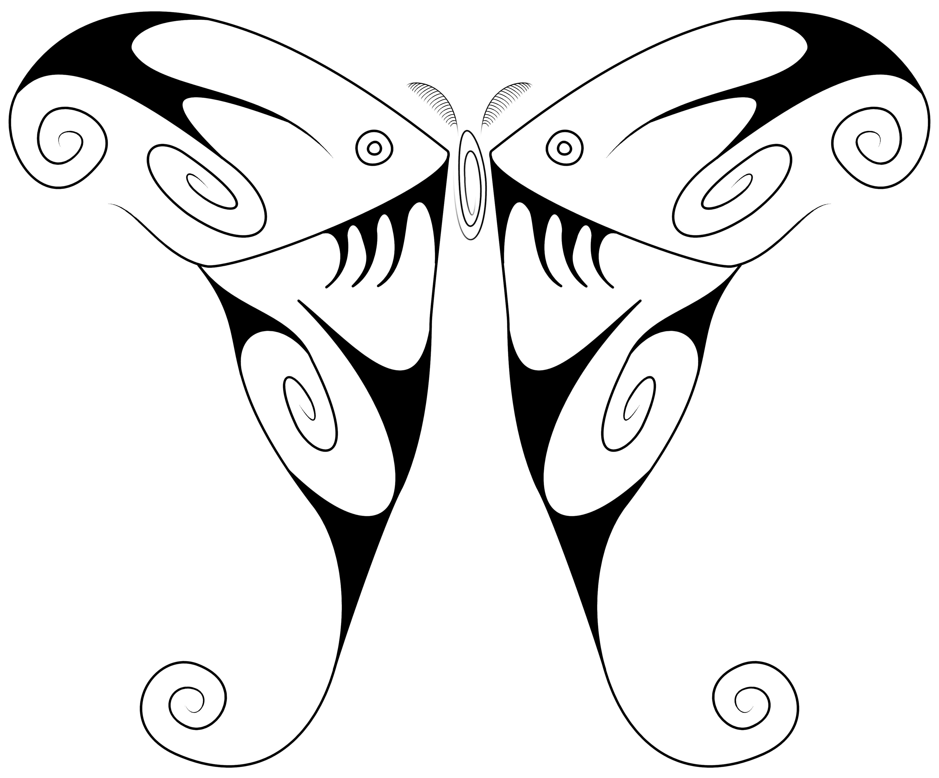 3648x3024 Swirly Luna Moth Full Masonillustration