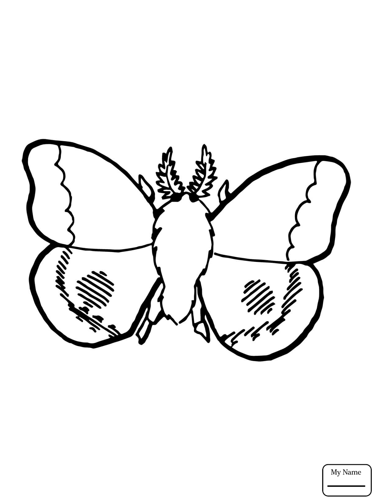1224x1632 Coloring Pages For Kids Luna Moth Moth Insects