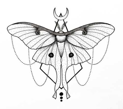 500x442 Geometrical Moth Tumblr