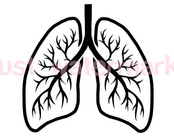 340x270 Lung Cancer Svg Etsy
