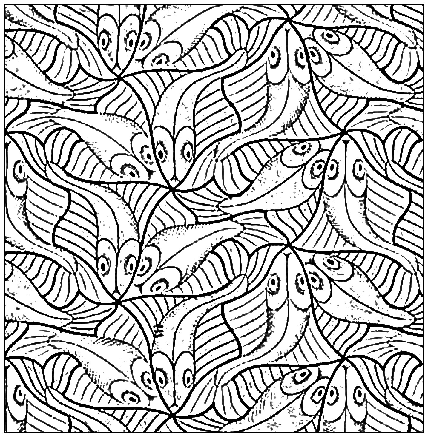 1433x1465 Squared Drawing With Fishes By M C Escher Animals