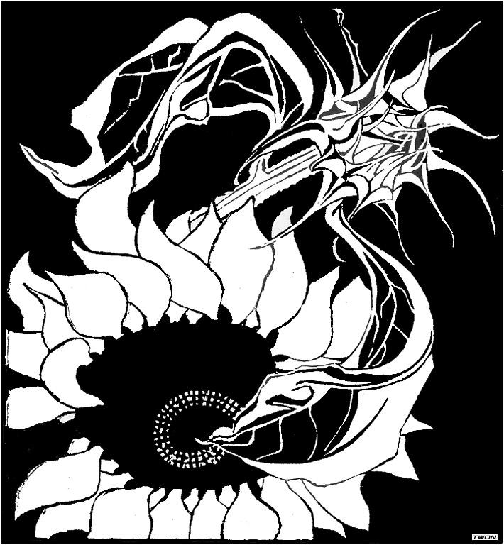 710x768 Sunflowers, 1918