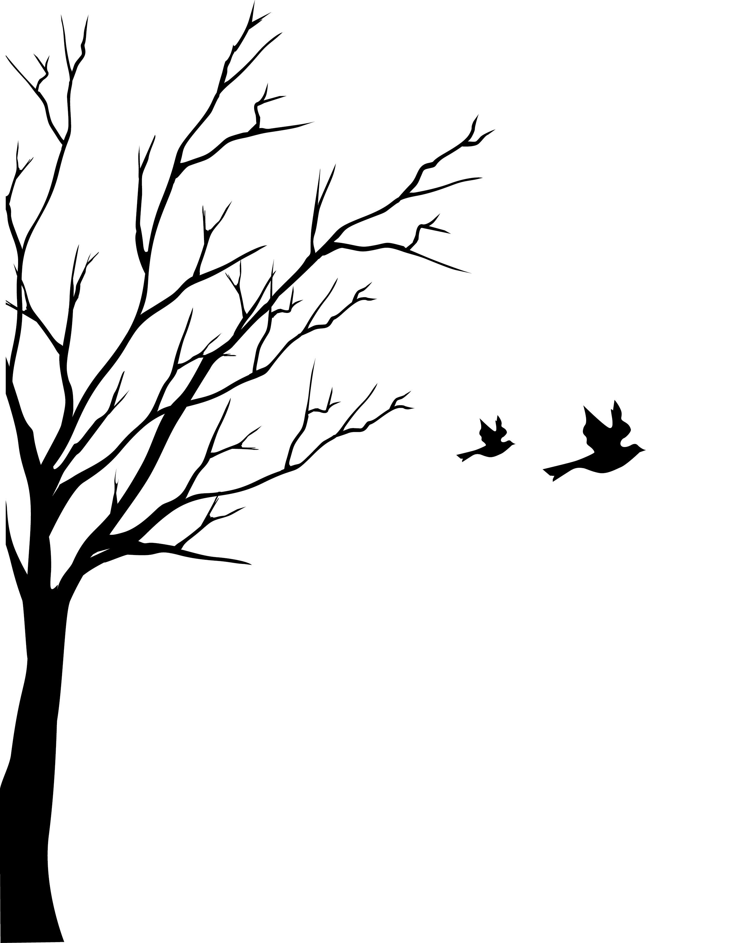 2479x3179 Tree Turning Into Birds Drawing Photos Good Pix Gallery Plates