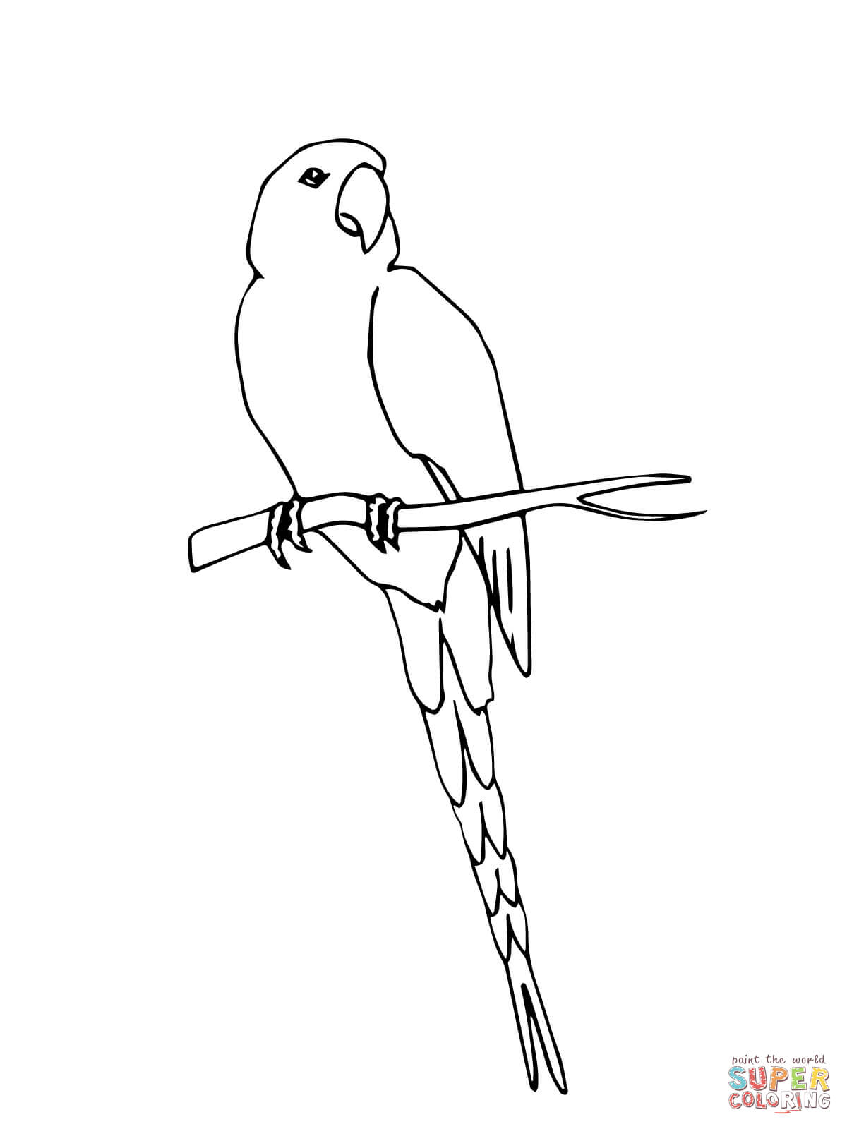 1200x1600 Macaw Coloring Pages Free Coloring Pages