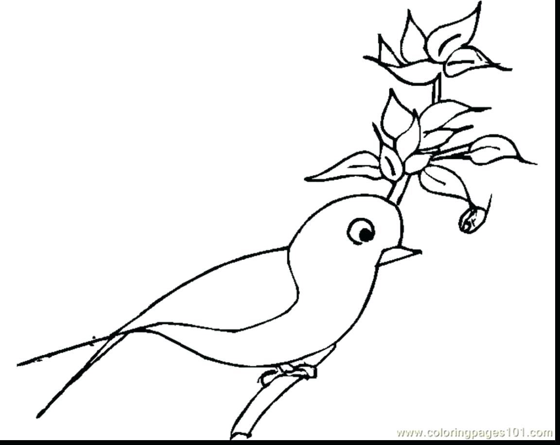 1152x915 Coloring Scarlet Macaw Coloring Page Drawing Throughout Sheet