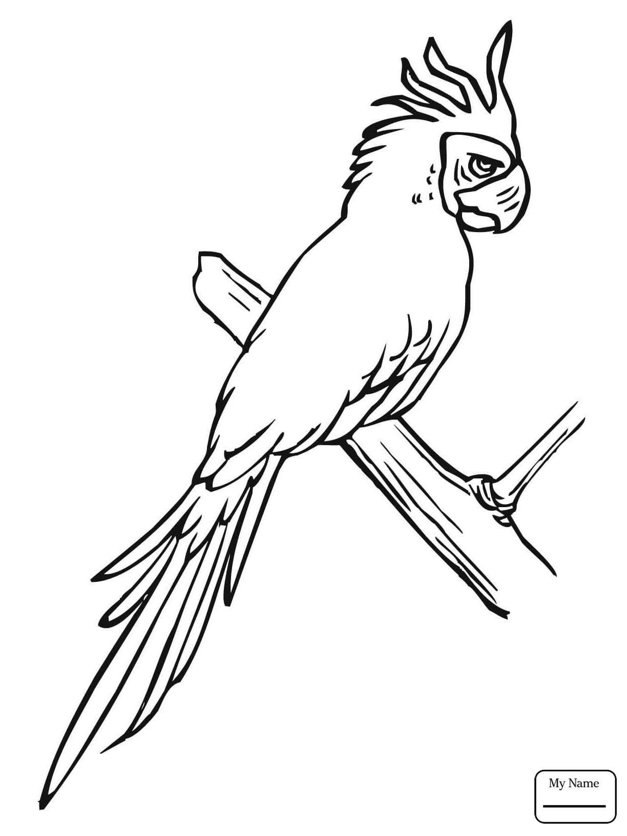 1224x1632 Endangered Birds Coloring Pages New Blue Macaw Coloring Pages Ebcs