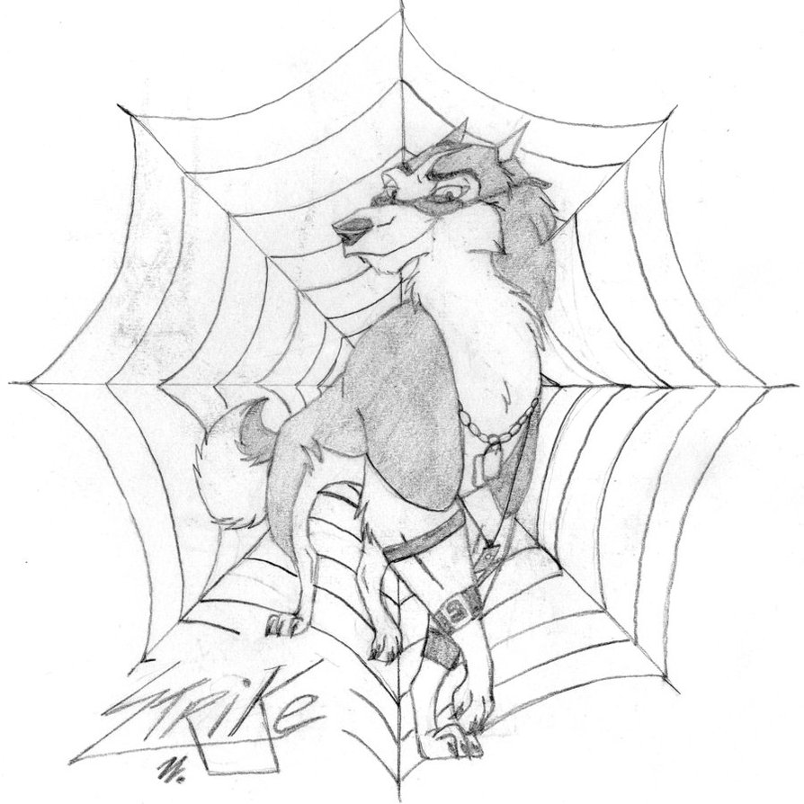 894x894 Strike The Spider Dog By Wolf Mad Artists