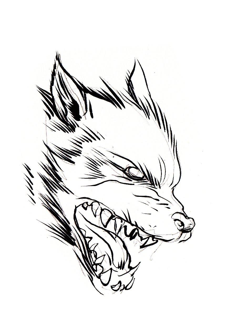 864x1273 Pretty Good Blog Warm Up Sketch Wolf