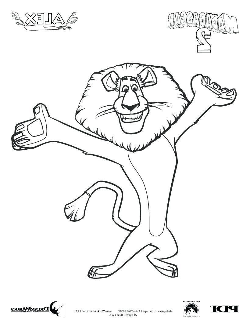 Madagascar Drawing at GetDrawings.com | Free for personal use ...