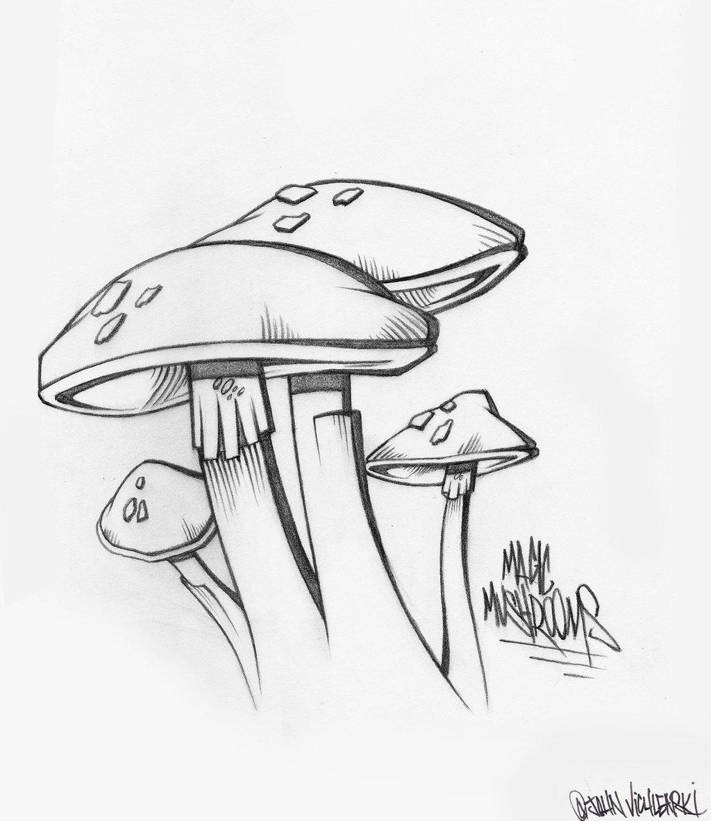 1024x1183 Magic Mushrooms By Johnvichlenski