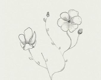340x270 Magnolia Drawing Etsy