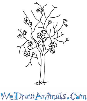 300x350 How To Draw A Magnolia Tree