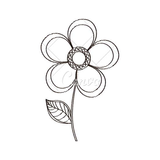 550x550 Magnolia Flower Decoration Sketch