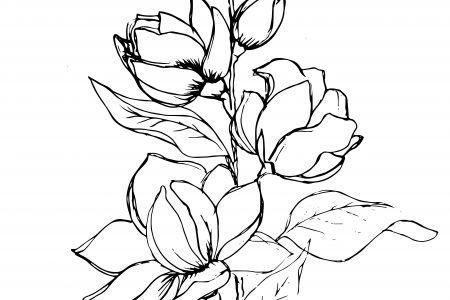 450x300 Cat Willett Page 2 Artist Designer Illustrator