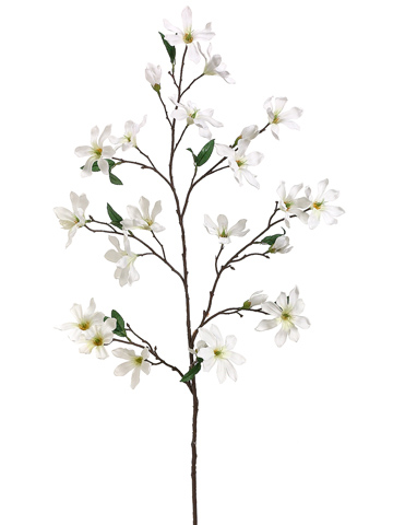 360x480 Flowering Branches Cream Flowers 44