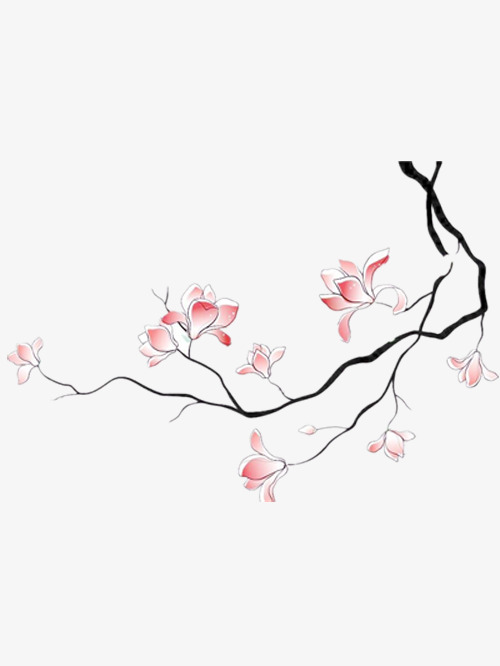 500x666 Hand Painted Magnolia, Nice Magnolia, Beautiful Magnolia, Pink