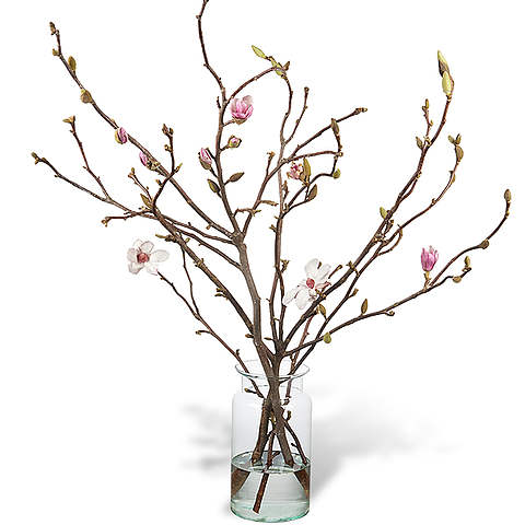 480x480 Bouquet Magnolia With Vase Order And Deliver
