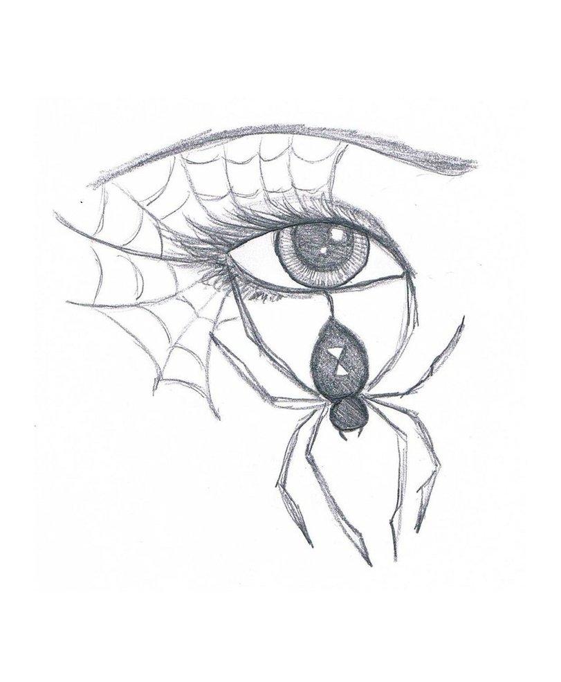 811x985 Spider Eye By Marissawalker
