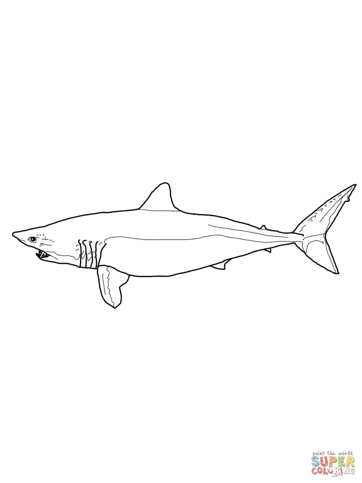 1200x1600 Mako Shark Coloring Page Free Printable Pages