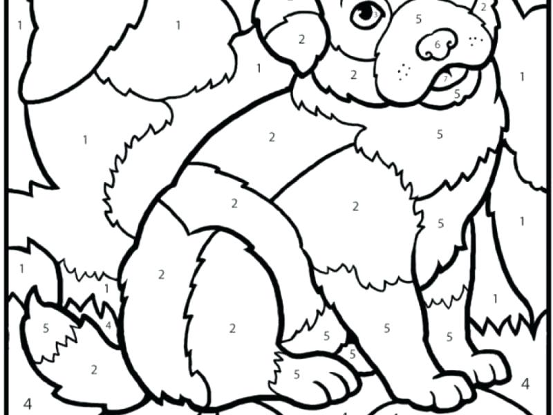 800x600 Malcolm X Coloring Pages Download Coloring Pages By Number Malcolm