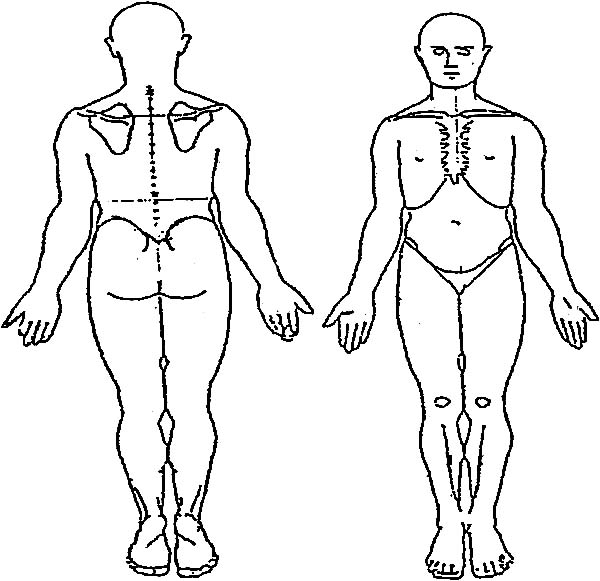 male body outline drawing at getdrawings free for personal use Body Diagram Front and Back 600x581 human body outline drawing coloring pages coloring sky