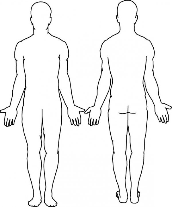 600x722 Medical Body Outline Front And Back